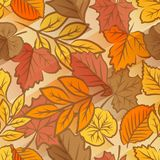 Autumn leaves seamless pattern Royalty Free Stock Photography
