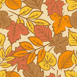 Autumn leaves seamless pattern Royalty Free Stock Image