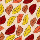 Autumn leaves seamless pattern. Vector natural background of yel Royalty Free Stock Photo