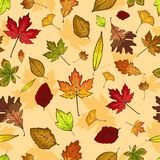 Autumn Leaves Seamless Pattern Wallpaper Imágenes de archivo libres de regalías