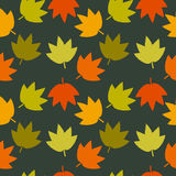 Autumn Leaves Seamless Texture Fotografia Stock Libera da Diritti