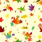 Autumn leaves. Seamless texture with falling autumn leaves, bright colors on a light background, illustration stock illustration