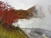 The Autumn Leaves season in Hokkaido ,Japan Royalty Free Stock Photo