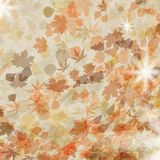 Autumn leaves. Seasonal template design. EPS 8 Stock Photo