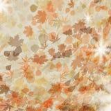 Autumn leaves. Seasonal template design. EPS 8 Stock Photo