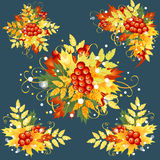 Autumn leaves, set of decorative elements. Stock Images