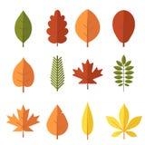 Autumn Leaves Set Stock Photography