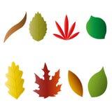 Autumn leaves. Set, vector illustration, eps 10 Stock Image