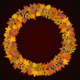 Autumn leaves in the shape of a circle frame Stock Photo