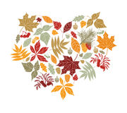 Autumn leaves in the shape of heart. Royalty Free Stock Image