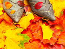 Autumn leaves and shoes Stock Images