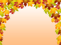 Autumn Leaves Shows Blank Space And Botanic Stock Image