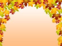 Autumn Leaves Shows Blank Space y botánico Imagen de archivo