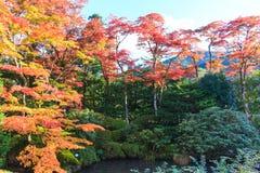 Autumn leaves in Shoyo-en Japanese garden Nikko, Japan stock photo
