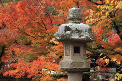 Autumn leaves at Shuzenji temple Royalty Free Stock Images