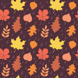 Autumn leaves silhouettes colorful seamless pattern Royalty Free Stock Photos