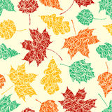 Autumn leaves with sketches lines Stock Images