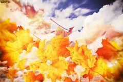 Autumn leaves in sky Stock Photography