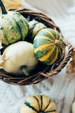 Autumn leaves and small decorative pumpkins on warm cozy knit sw stock images