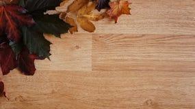 Autumn Leaves som är ordnad i ett hörn mot en träbakgrund royaltyfria foton