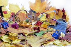 Autumn leaves with some decorative elements. Love abstraction. Autumn leaves with some decorative elements Stock Image