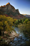 Autumn Leaves and a Sparkling Stream in Zion National Park Royalty Free Stock Image
