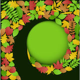 Autumn Leaves Spiral Background Royalty Free Stock Photography