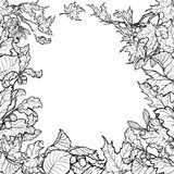 Autumn leaves square frame. Black and white sketch. Fall Festival frame or border. Greeting card, flyer or poster template. Sketch style autumn leaves isolated stock illustration