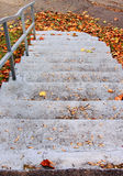 Autumn leaves stairs Royalty Free Stock Images