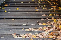 Autumn leaves on the stairs Stock Photography