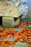 Autumn Leaves su un patio Fotografie Stock Libere da Diritti
