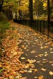 Autumn Leaves sur le chemin Images libres de droits