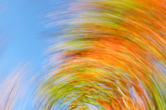 Autumn leaves swirl Stock Photography