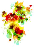Autumn leaves swirl. With space for text Stock Photo