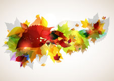 Autumn leaves swirl. With raindrops Royalty Free Stock Image