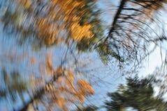 Autumn Leaves Swirl. Selective focus stock image