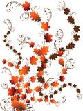 Autumn leaves swirls Stock Images