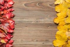 Autumn leaves on table Stock Photos