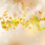 Autumn Leaves temabakgrund Vektor för EPS 10 Royaltyfri Fotografi