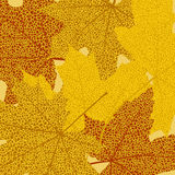 Autumn leaves template Royalty Free Stock Photos