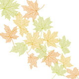 Autumn leaves template Stock Image