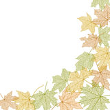 Autumn leaves template Royalty Free Stock Images