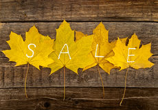 Autumn leaves with text SALE on rustic wooden background. Autumn Stock Photography