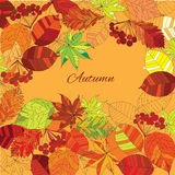 Autumn leaves with text. Vector illustration of background autumn leaves with text Royalty Free Stock Photo