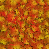 Autumn Leaves Texture. A red and brown autumn leaves background Stock Photos