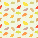 Autumn leaves texture Stock Photo