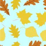 Autumn Leaves Texture Fotografía de archivo libre de regalías