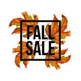 Autumn Leaves texture d'aquarelle Feuille de chute Conception de lettrage de vente Illustration EPS10 de vecteur Image libre de droits
