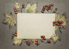 Autumn leaves on textured paper. Autumn leaves and rowan berries on textured paper background, space Royalty Free Stock Image