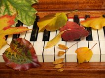 Autumn Leaves Tickle the Ivories. Time for autumn music !  Fall leaves sprinkled on an antique upright piano Royalty Free Stock Image